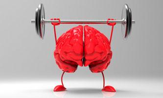 mozak aktivnosti